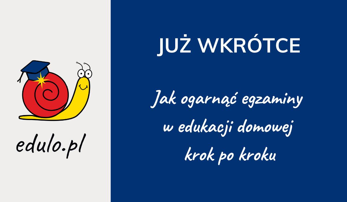E-book Jak ogarnąć egzaminy w edukacji domowej krok po kroku